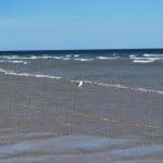 Playas Doradas