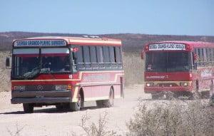 Nuevos horarios de Doradas Bus